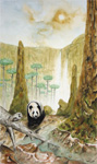 Inquisitive Panda