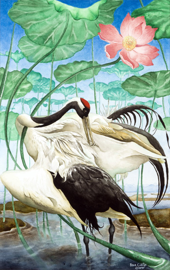 Red-Crowned Cranes Triptych Preening